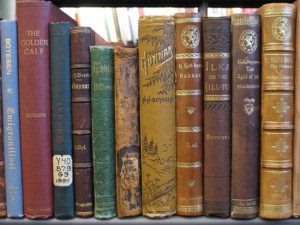 Books in the Norwegian-American Collection at the National Library of Norway. Photo: Erica Olsen