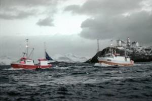 Photo: Jean Gaumy / Seafood.no.
