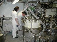 Early production stage of SBG. Photo: www.biotec.no