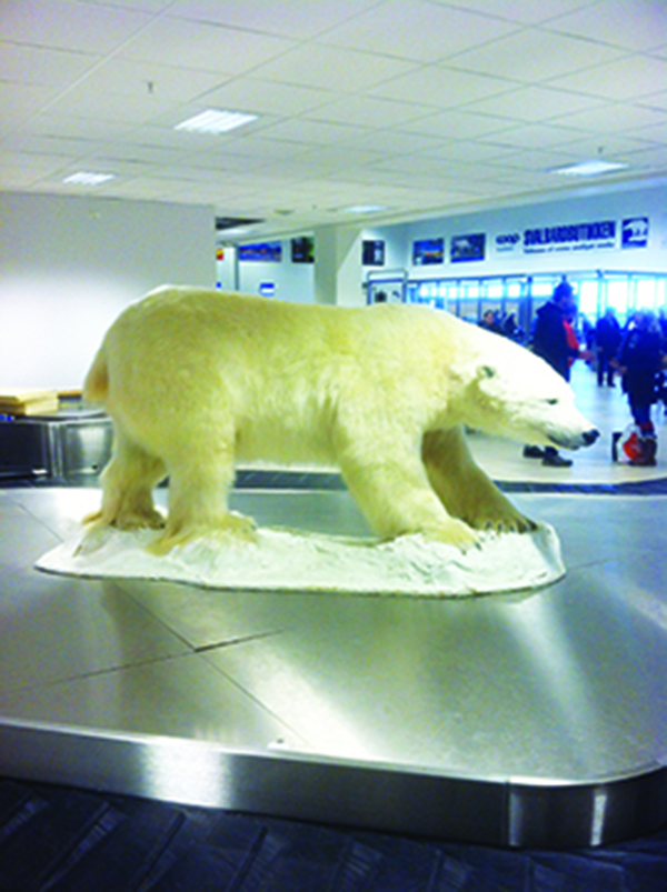 This polar bear sets the tone for all visitors, greeting them at the airport's baggage claim.