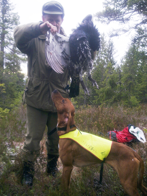 Photo courtesy of Ottar Nord Ottar Nord of Roa bagged a large tiur with the aid of his dog Lara.