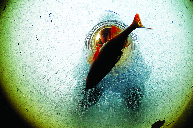 Photo: Yngve Ask / Visitnorway.com What ice fishing looks like to the fish.