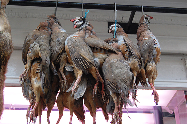 Photo: Andy Mabbett / Wikimedia Commons Red-legged Partridges hanging at an English butcher shop.