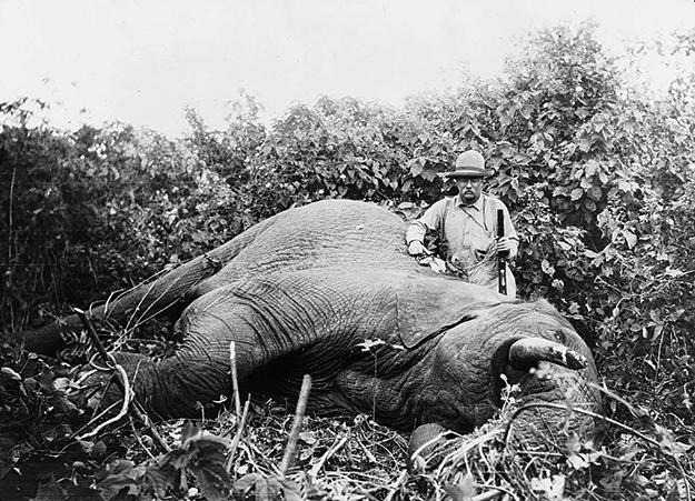 Photo: Library of Congress Former U.S. President Theodore Roosevelt's 1909 hunting trip helped popularize the African safari, yet he is hailed as a conservationist.