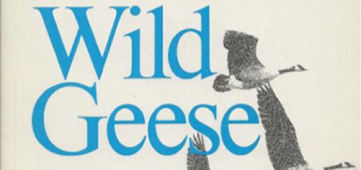 An analysis of martha ostensos book wild geese