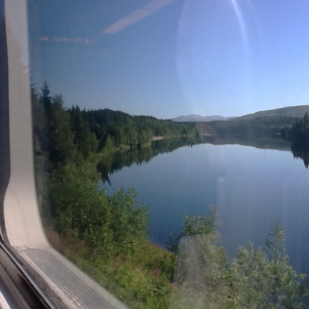 Photo: Heidi Håvan Grosch The view from a train.