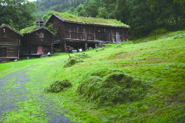 Photo: Meldal Bygdemuseum / Facebook The Meldal Bygdemuseum is an open-air museum of buildings from as early as the 17th century.