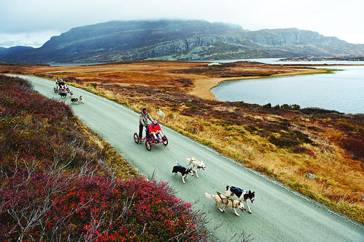 Photo: Terje Rakke  Nordic Life AS / Visitnorway.com
