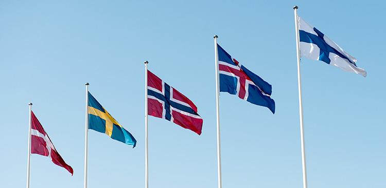 Картинки по запросу Nordic model