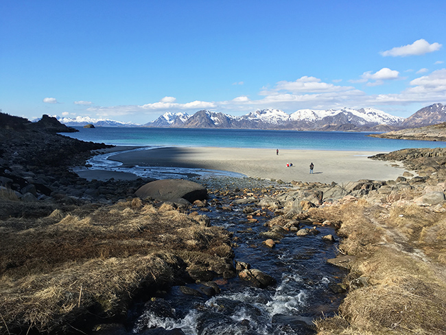 Lofoten beaches